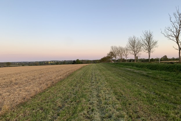 Can Farming Be Sustainable?