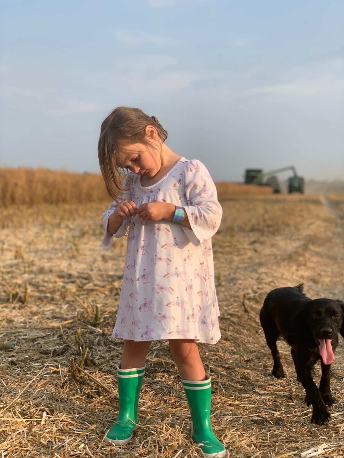 Tuckwells Farms: Harvest Update